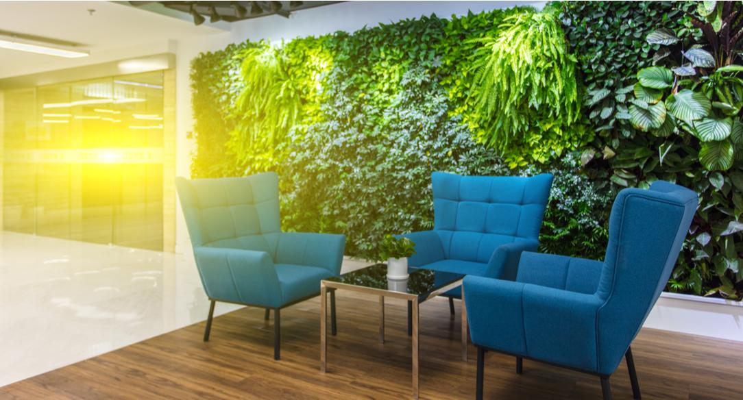 descubre cómo motivar a los empleados con espacios verdes